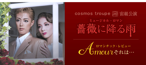 『薔薇に降る雨/Amour それは・・・』