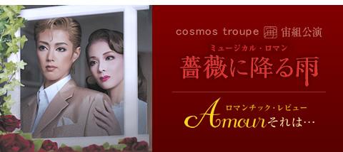 薔薇に降る雨/Amour それは・・・